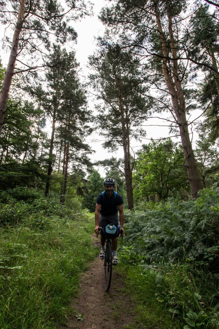 coast-to-roast-woods-ride3